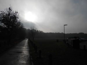 St John's lye looking a bit moody and foggy!